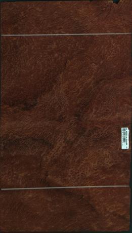 Vavona korenica, 11,1744