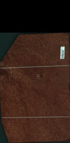 Vavona korenica, 7,5600