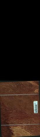Vavona korenica, 2,4000