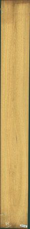 Cerejeira, 24.1560