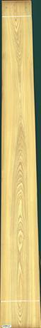 Cypress, 23.5520